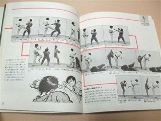 Ашихара карате книга