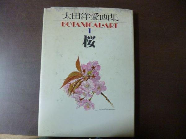 Photo1: Yoai OHTA Art Botanical Art vol.1 Sakura Cherry Blossoms (1981) Japanese book (1)