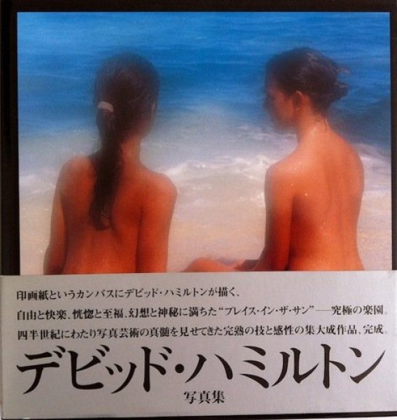 Photo1: DAVID HAMILTON BOOK - A Place in the Sun 【USED】from JAPAN (1)