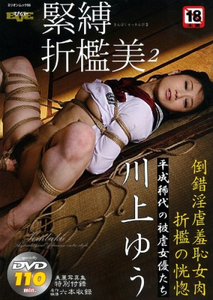 Photo1: Japan Japanese bondage kinbaku shibari book : bondage kinbaku Chastisement vol.2 W/DVD (1)