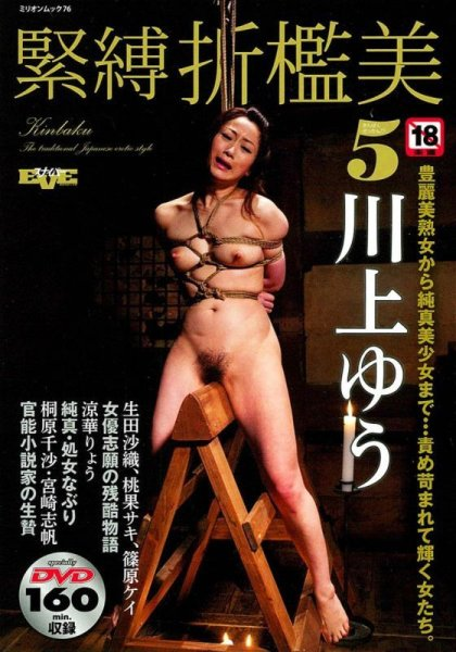 Photo1: Japan Japanese bondage kinbaku shibari book : bondage kinbaku Chastisement vol.5 W/DVD (1)