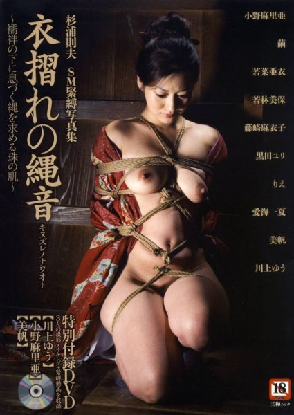 Photo1: Japan Japanese bondage kinbaku shibari book : Rope sound of the rustle of clothes W/DVD (1)
