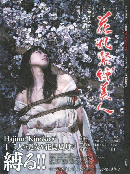 Photo1: Japan Japanese bondage kinbaku shibari book : Japanese playing cards kinbaku beautiful woman (1)